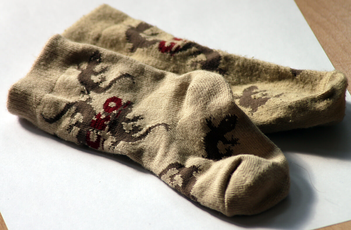 Die Gecko-Socken